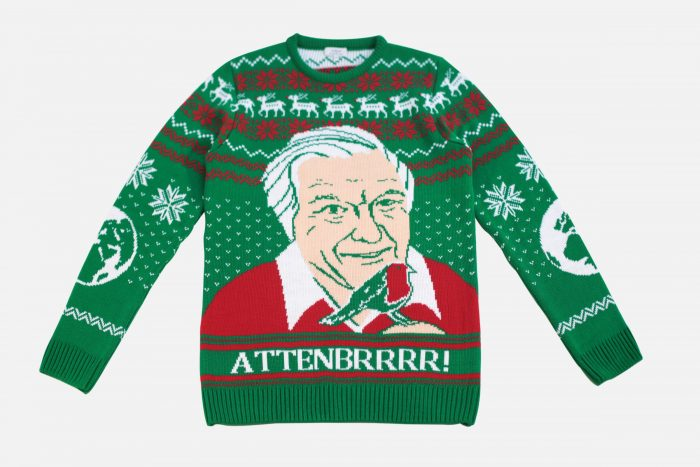 NotJust Attenborough Christmas Jumper